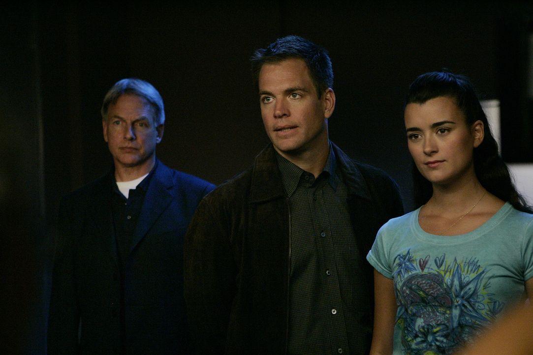 Sind total überrascht, als sie erfahren, dass Gibbs 3. Ex-Frau eine der Verdächtigen ist: Gibbs (Mark Harmon, l.), Tony (Michael Weatherly, M.) un... - Bildquelle: CBS Television