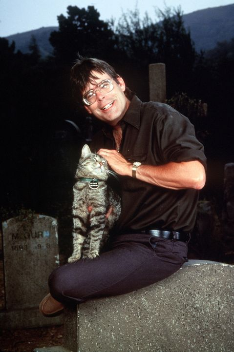Stephen King, der König der Horror-Literatur ... - Bildquelle: Columbia Pictures