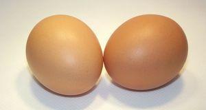 Aus diesen zwei Eiern entstehen im Nu der Kopf des Schafes und die Ohren.