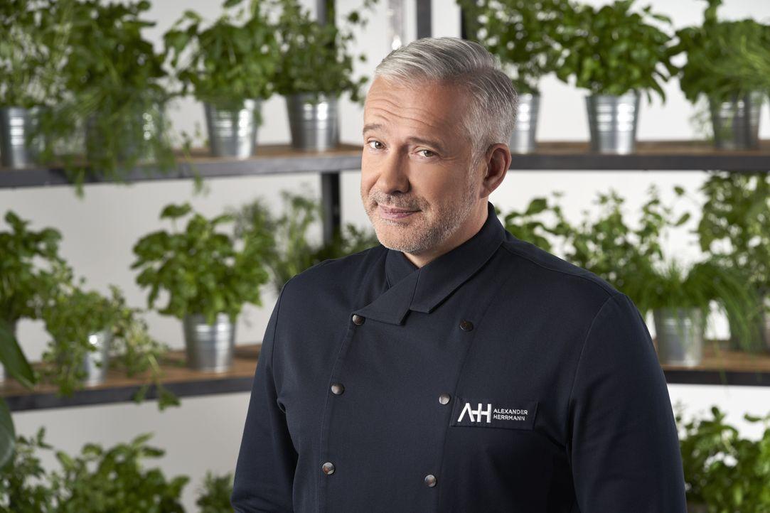 Alexander Herrmann - Bildquelle: Jens Hartmann SAT.1 / Jens Hartmann