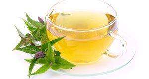 Tee aus dem Kraut hilft bei vielerlei Beschwerden. Genießen Sie ihn aber nur...
