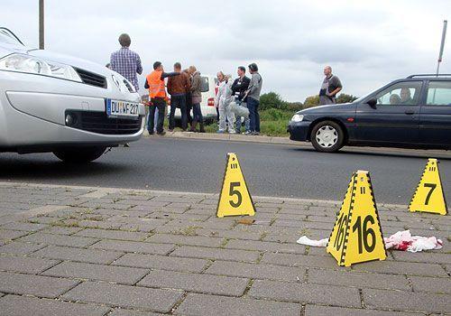 Niedrig und Kuhnt: Bildergalerie 2011 - Bildquelle: Sat1