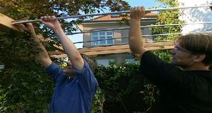 Klettergerüst Rosen Selber Bauen : Sichtschutz selber bauen sat ratgeber
