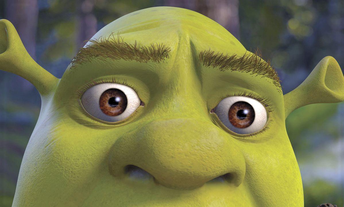 Kaum am Schloss seiner Schwiegereltern angekommen, gerät Shrek mitten in ein neues aufregendes Abenteuer ... - Bildquelle: DreamWorks SKG