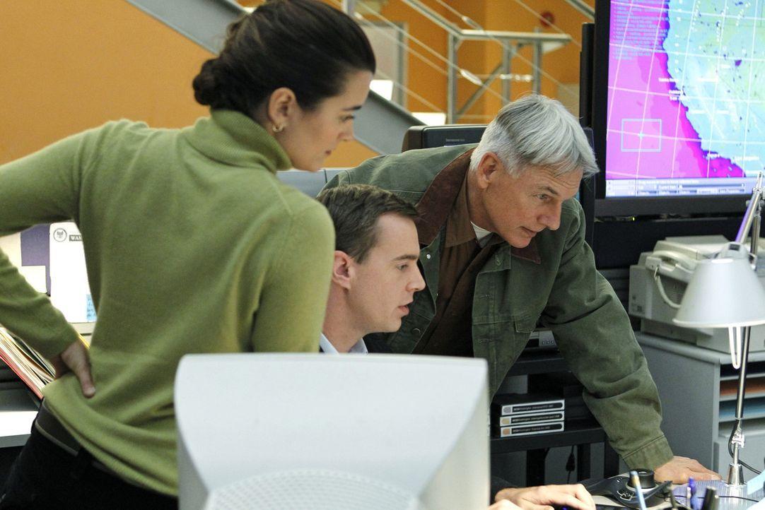 Auch die Weihnachtszeit bedeutet Arbeit für das NCIS-Team. Ziva (Cote de Pablo, l.), McGee (Sean Murray, M.) und Gibbs (Mark Harmon, r.) scheinen e... - Bildquelle: CBS Television