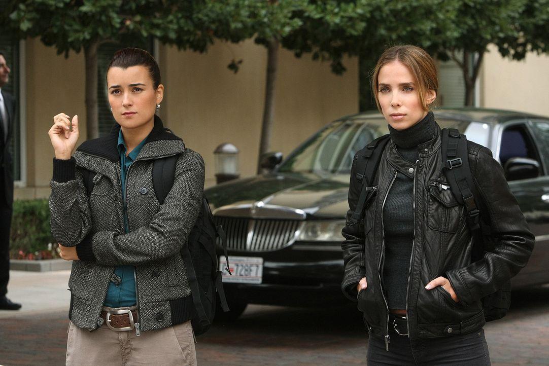 Sind dazu beauftragt, Mossad Director Eli David zu beschützen: Ziva (Cote de Pablo, l.) und Mossad Officer Liat Tuvia (Sarai Givaty, r.) ... - Bildquelle: CBS Television
