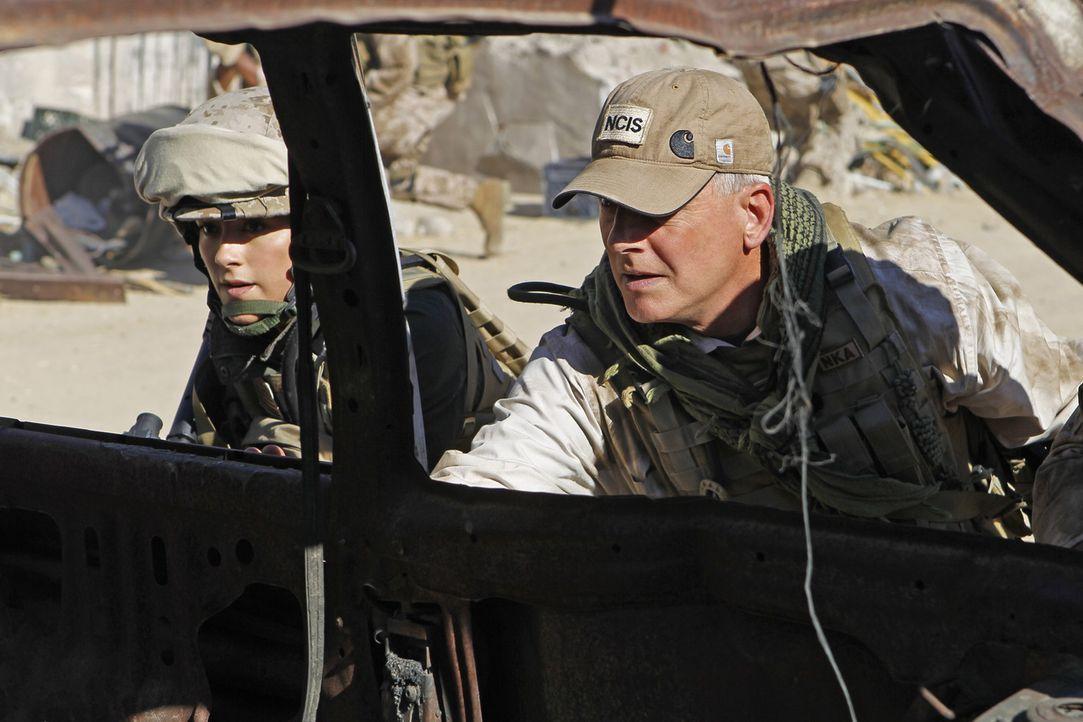 Das NCIS Team sucht weiter nach einer verschwundenen Marinesoldatin. Die Ermittlungen führen Gibbs (Mark Harmon, r.) und Ziva (Cote de Pablo, l.) a... - Bildquelle: CBS Television
