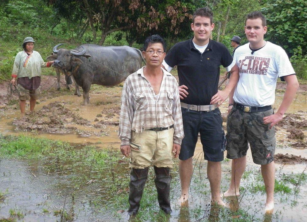 Die beiden Jungbauern und Brüder Julian (22) und Niklas (19) aus Großenlüder bei Fulda tauschen für eine Woche ihren Job mit zwei Bauern aus Cha... - Bildquelle: kabel eins
