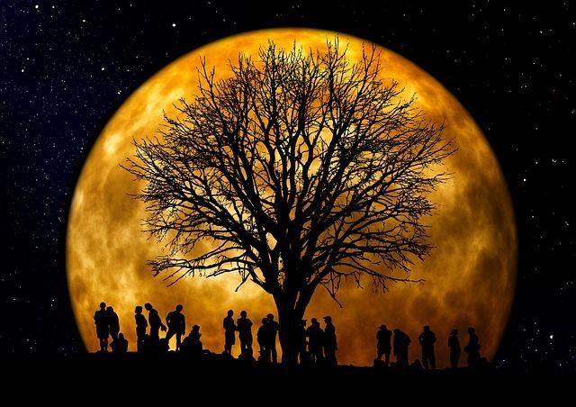 Einen sternenklaren Himmel gibt es oft, aber dieses Spektakel bekommst du so...