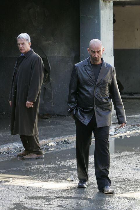 Der CIA-Agent Kort (David Dayan Fisher, r.) bittet Gibbs (Mark Harmon, l.) um Hilfe bei einem Fall, denn er will den Gangsterboss Siravo und dessen... - Bildquelle: CBS Television
