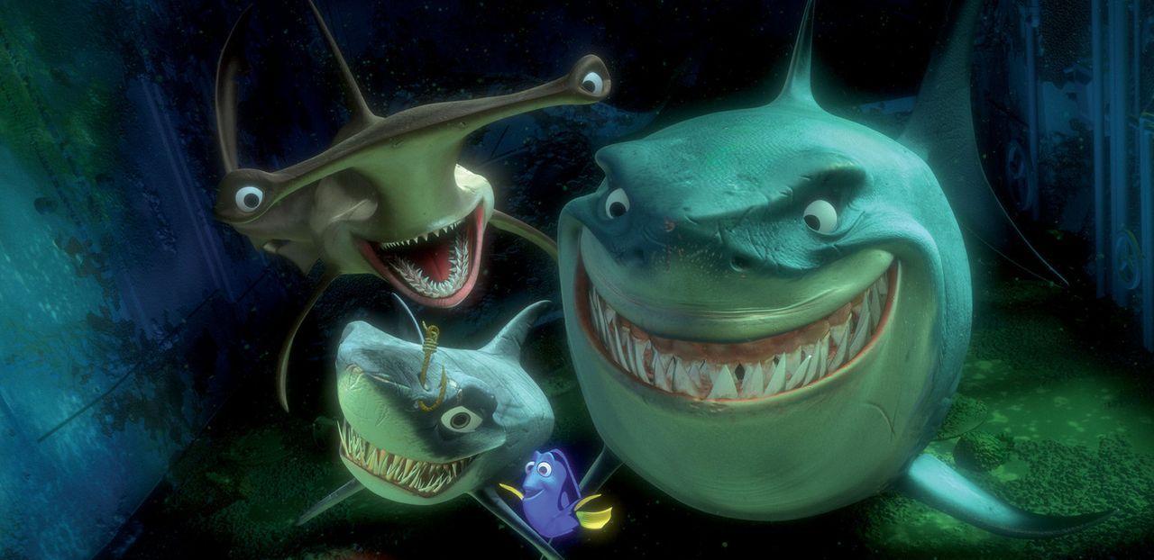 Die treudoofe Dorie (2.v.r.) hat keine Angst vor Bruce (r.) und seinen Gefährten Hammer (hinten l.) und Hart (vorne l.) ? schließlich gehören sie do... - Bildquelle: Walt Disney Pictures