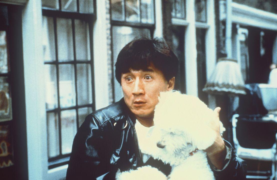 Immer auf der Flucht: Spezialagent Whoami (Jackie Chan) ist vielen Kriminellen ein Dorn im Auge ... - Bildquelle: Columbia TriStar Film
