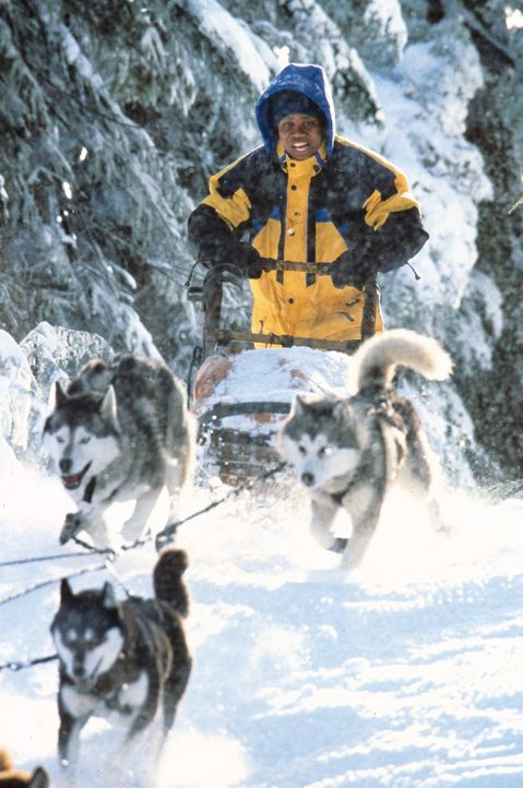 Ahnungslos macht sich Ted (Cuba Gooding jr.) auf den Weg, um in der Einöde von Eis und Schnee sein Erbe anzutreten. Doch statt des großen Geldes e... - Bildquelle: Disney Enterprises, Inc.