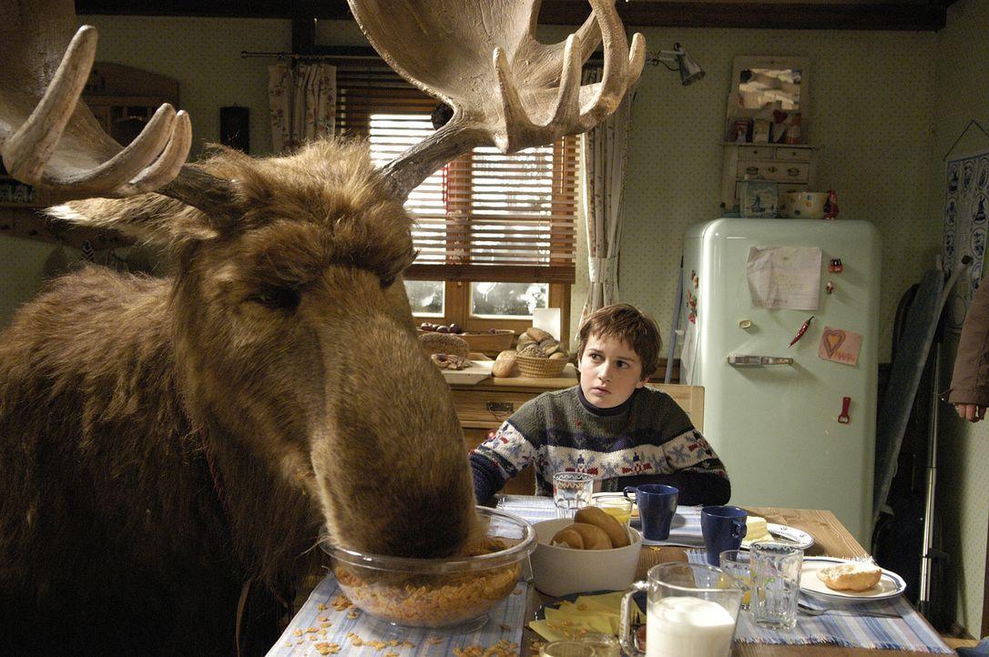 Am dritten Advent fällt bei Familie Wagner ein riesiger Elch durchs Dach ins Wohnzimmer. Bis Mr. Moose von seinem Chef, dem Weihnachtsmann, wieder... - Bildquelle: Buena Vista International Television