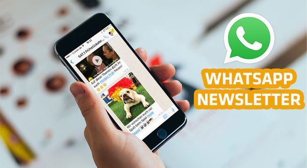 WhatsAppNL_Teaserbild