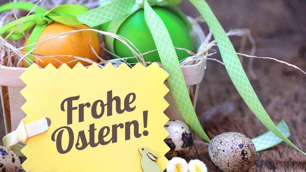 Osternest Ideen Und Tipps Fürs Basteln Sat1 Ratgeber