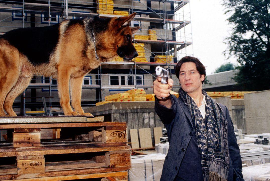 Kommissar Moser (Tobias Moretti, r.) und Rex jagen einen Killer ... - Bildquelle: Ali Schafler Sat.1