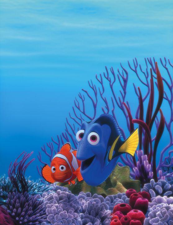 Dorie (r.) ist wohl der vergesslichste Plattendoktorfisch, den der Clownfisch Marlin (l.) jemals getroffen hat ? - Bildquelle: Walt Disney Pictures