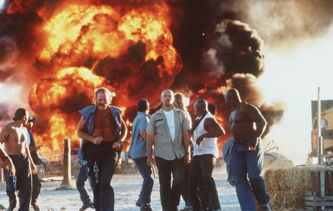 Hemmungslose Killer: Cyrus 'The Virus' Grissom (John Malkovich, M.) und Jimmy Earl 'Swamp Thing' West (M. C. Gainey, l.). Eines Tages sollen die Sch... - Bildquelle: Buena Vista International