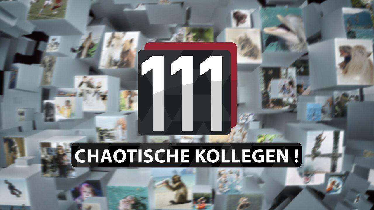 111 chaotische Kollegen! - Logo - Bildquelle: SAT.1