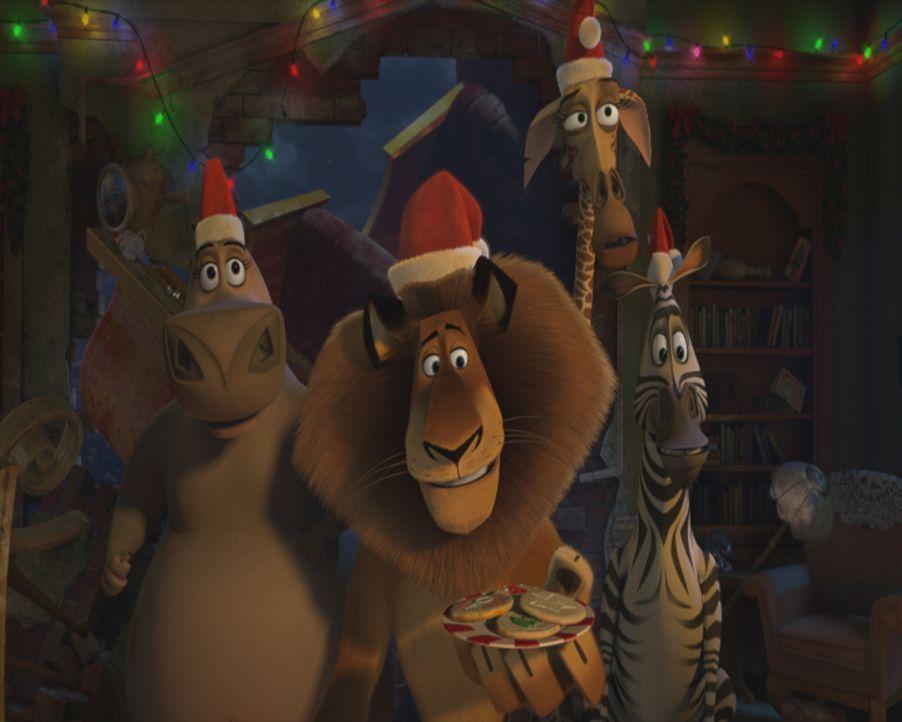 Weil der Weihnachtsmann über Madagaskar mit seinem Schlitten abgestürzt ist und dabei sein Gedächtnis verloren hat, müssen nun Alex (2.v.l.), Marty... - Bildquelle: United International Pictures (UIP)