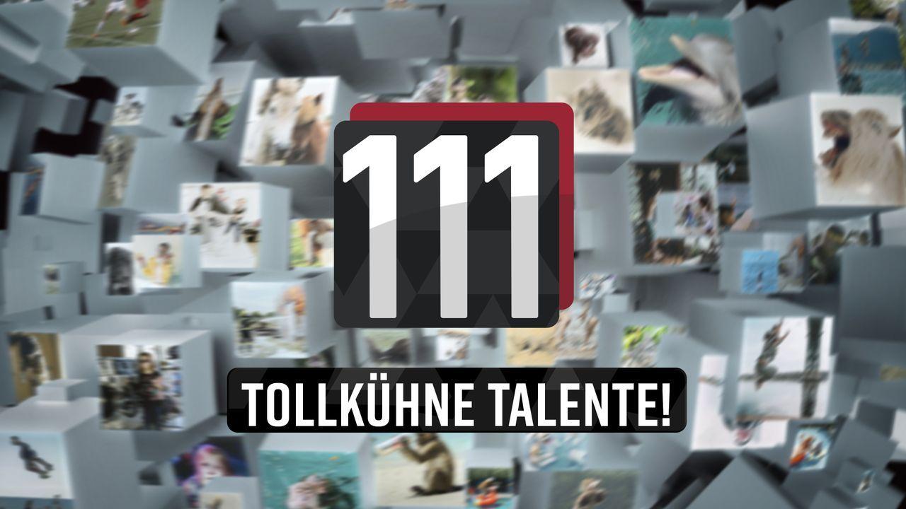 111 tollkühne Talente! - Artwork - Bildquelle: SAT.1