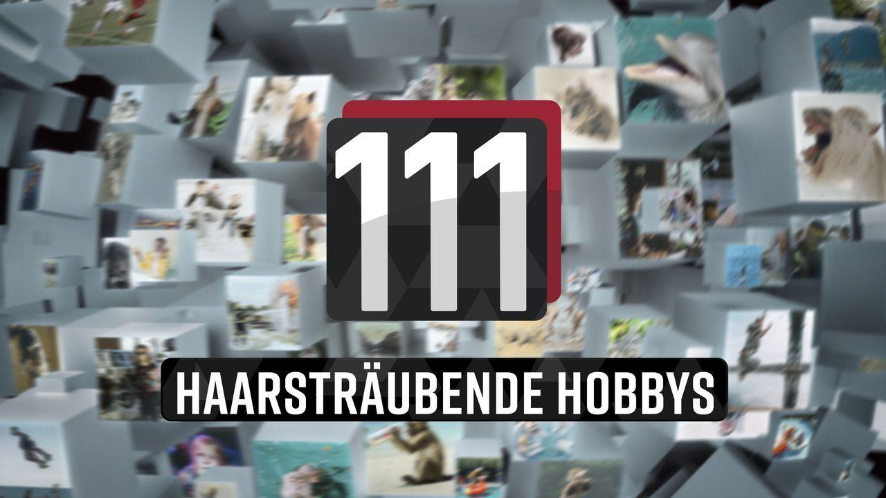 111 haarsträubende Hobbys! - Logo - Bildquelle: SAT.1