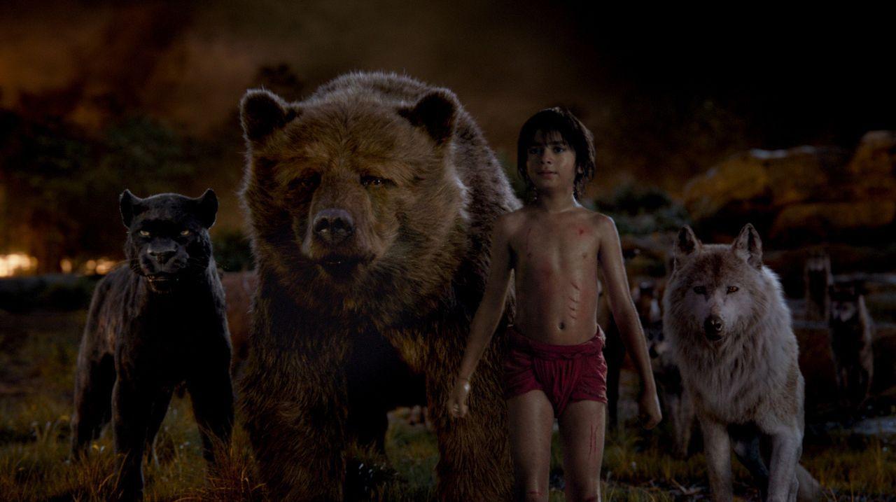 Mit seinen Freunden ist Mogli (Neel Sethi) unschlagbar ... - Bildquelle: Disney Enterprises, Inc. All Rights Reserved.