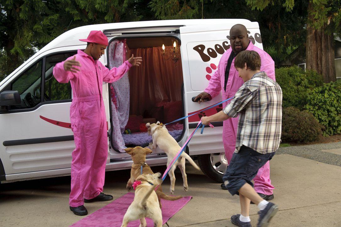 Bodi Grogan (Travis Turner, r.) beschließt kurzerhand, Marley bei einem Hundewettbewerb teilnehmen zu lassen. Tom (Jarod Joseph, l.) versucht mit e... - Bildquelle: 2011 Twentieth Century Fox Film Corporation. All rights reserved.