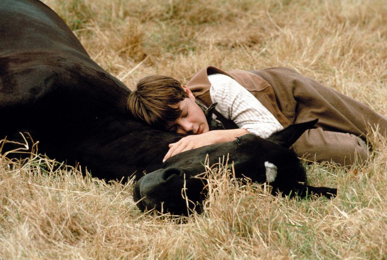Joe Green (Andrew Knott) liebt Black Beauty über alles ... - Bildquelle: Warner Bros.