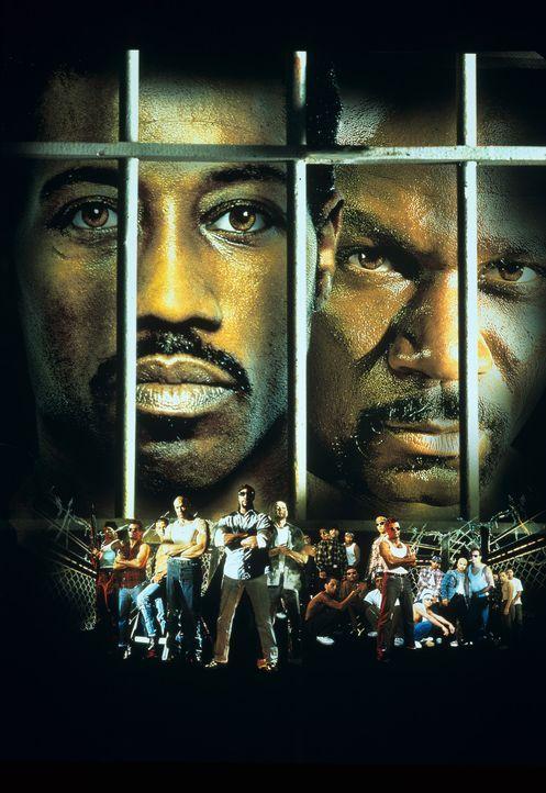 Undisputed - Sieg ohne Ruhm mit Wesley Snipes, l. und Ving Rhames, r. - Bildquelle: Miramax Films