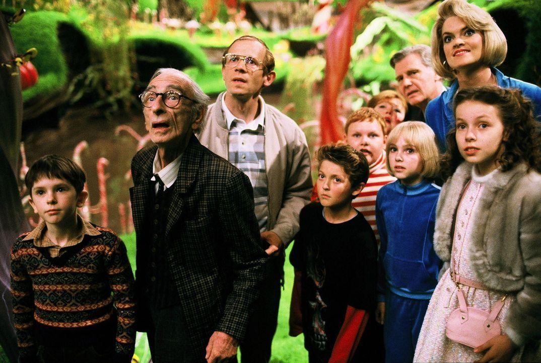 Wonka führt die Gewinner und deren Angehörige (v.l.n.r.: Freddie Highmore, David Kelly, Adam Godley, Jordan Fry, Philip Wiegratz, Franziska Troegner... - Bildquelle: Warner Bros. Pictures
