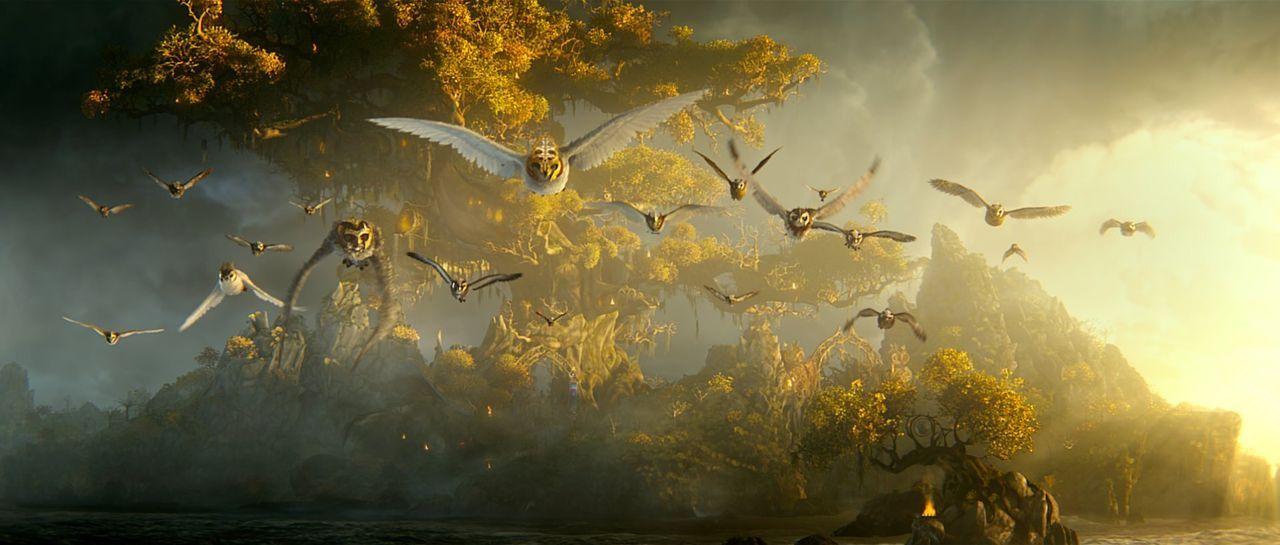 Sie brechen auf in den Kampf gegen die das Böse: Die geflügelten Wächter von Ga'Hoole verteidigen die Eulen gegen die sogenannten Reinsten ... - Bildquelle: Warner Brothers