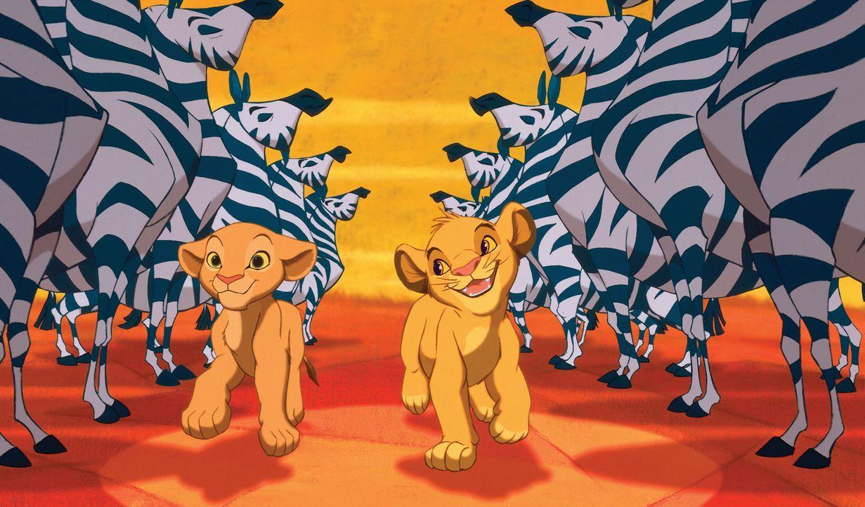 Gehen gemeinsam durch dick und dünn: Nala (l.) und Simba (r.) ... - Bildquelle: Disney