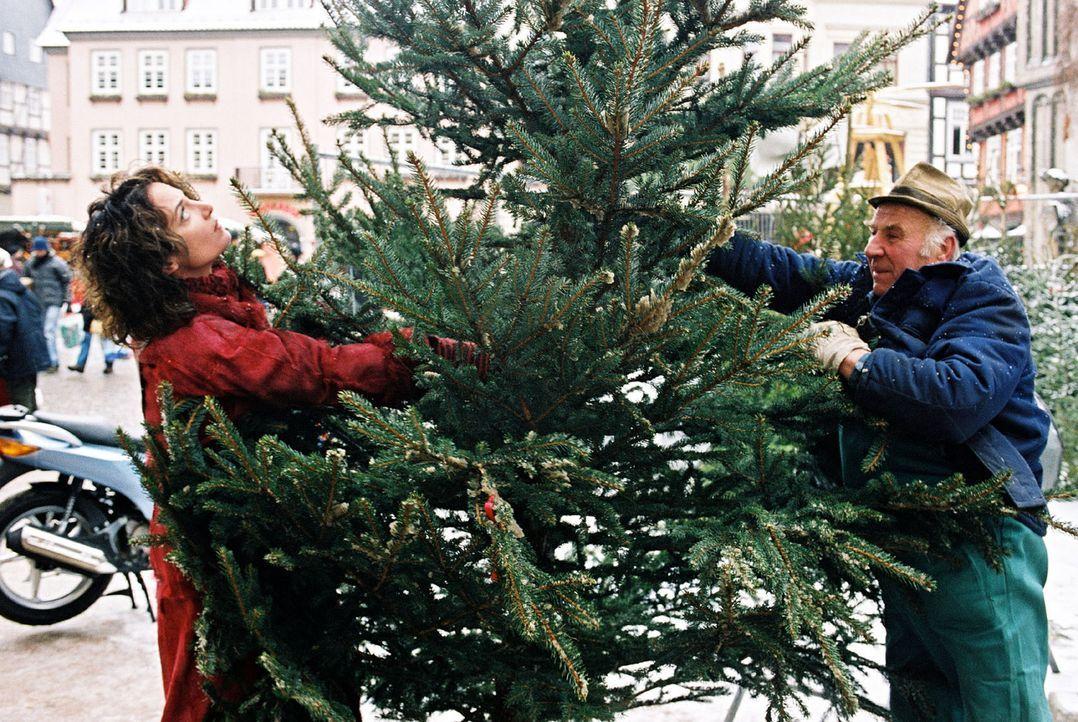 Marie (Natalie Wörner, l.) holt den von ihrer Tochter Lena bestellten Weihnachtsbaum vom Markt ab. Doch mit diesen Dimensionen hat sie nicht gerech... - Bildquelle: Sat.1