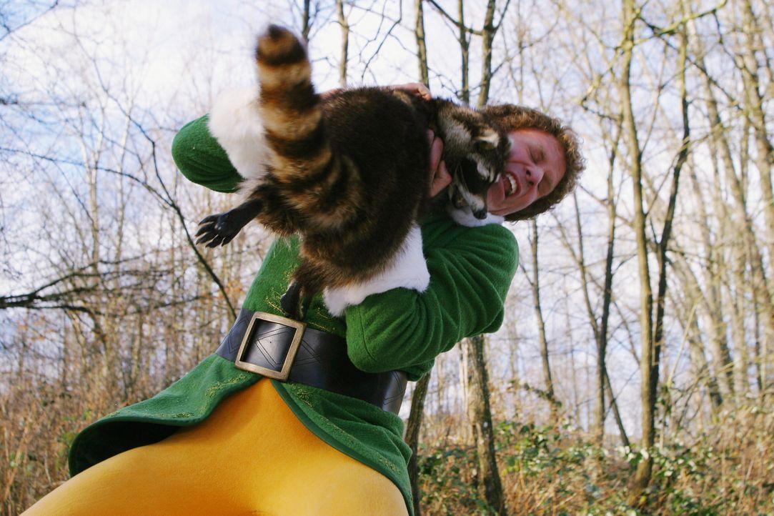 Buddy (Will Ferrell), der Weihnachtself, hat in New York mit einigen Abenteuern zu kämpfen ... - Bildquelle: Warner Bros. Television