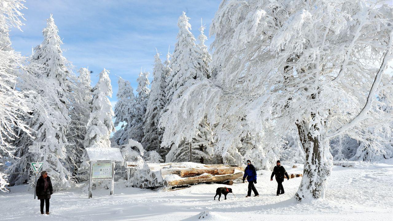 winterspecial-winterlandschaft-10-11-30-dpa - Bildquelle: dpa