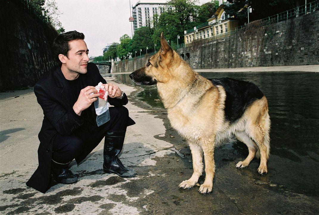 Rex bringt Marc (Alexander Pschill) ein verdächtiges Fundstück ... - Bildquelle: Sat.1
