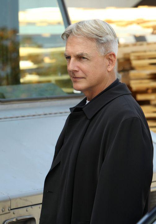 Ein neuer Fall wartet auf Gibbs (Mark Harmon) und sein Team ... - Bildquelle: CBS Television