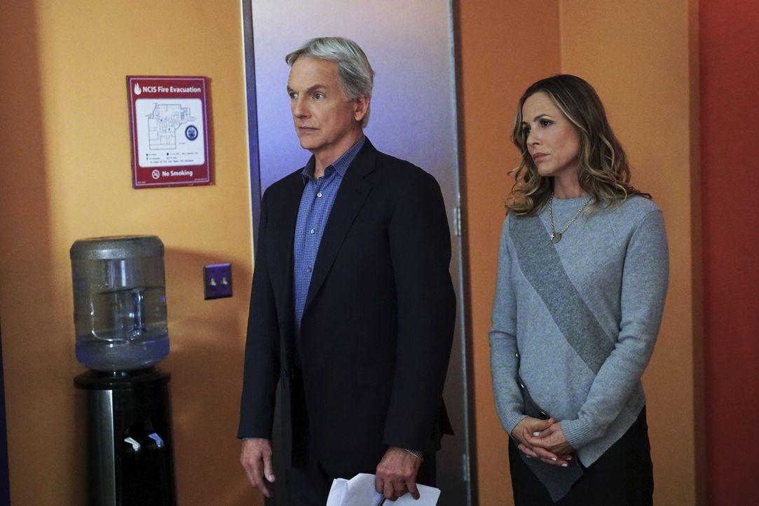 Während das NCIS-Team Gibbs (Mark Harmon, l.) und Sloane (Maria Bello, r.) in einem Fall von Fahrerflucht mit einem Toten ermittelt, wird beschäftig... - Bildquelle: Monty Brinton 2017 CBS Broadcasting, Inc. All Rights Reserved