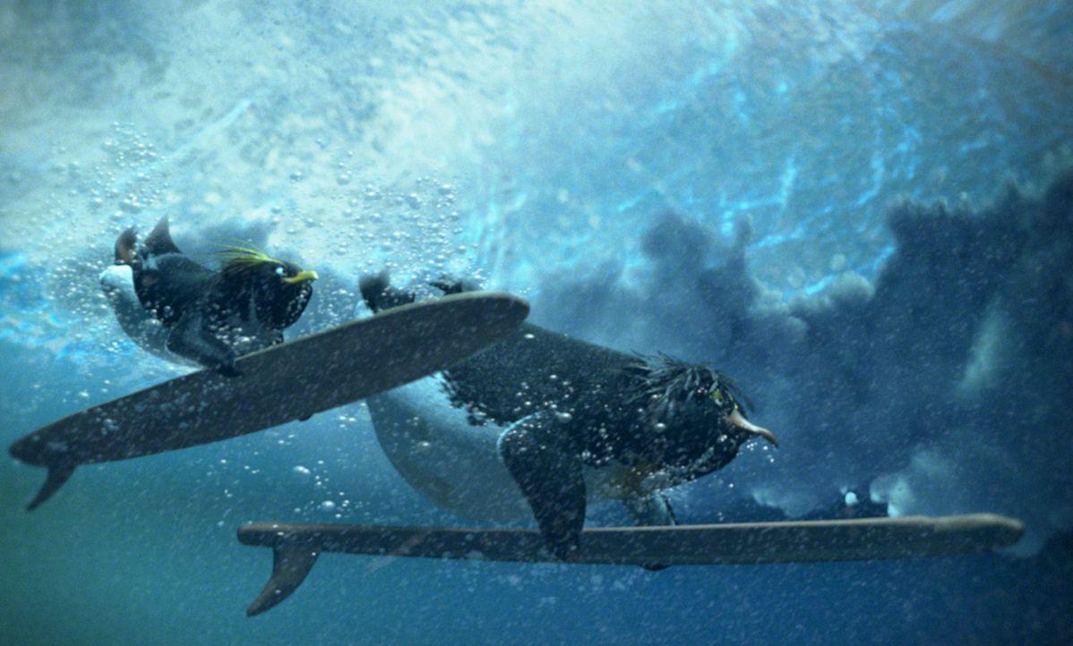 Von der Surferlegende Big Z. (r.) höchstpersönlich lernt Cody (l.) alles übers Surfen. Doch sein großes Vorbild verschwindet eines Tages währen... - Bildquelle: 2007 Sony Pictures Animation Inc. All Rights Reserved.