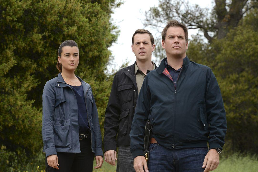 Versuchen einen neuen Fall aufzuklären: Ziva (Cote de Pablo, l.), McGee (Sean Murray, M.) und DiNozzo (Michael Weatherly, r.) ... - Bildquelle: CBS Television