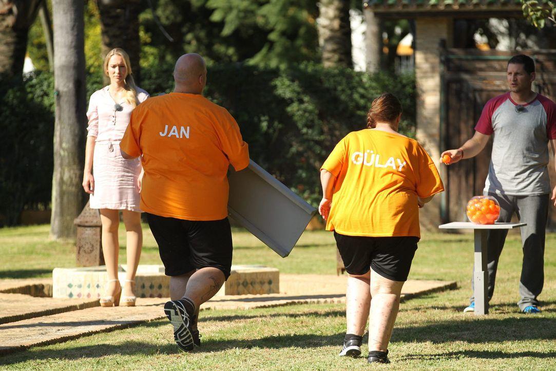 Camp-Chefin Christine Theiss (l.) und Trainer Ramin (r.) lassen Jan (2.v.l.) und Gülay (2.v.r.) zur Challenge antreten ... - Bildquelle: SAT.1/Enrique Cano