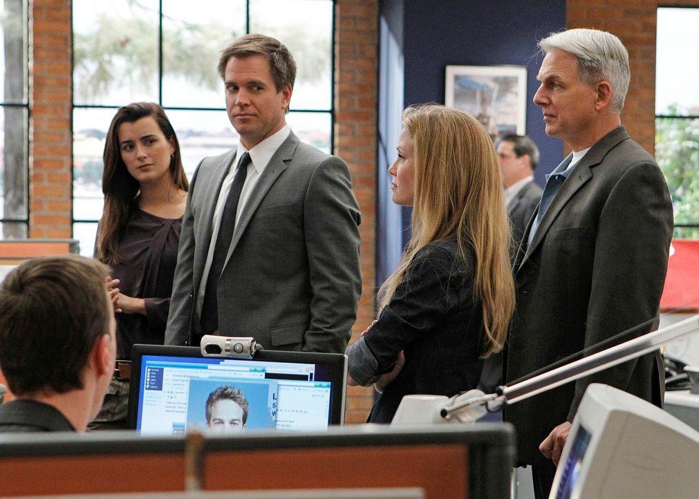 Bekommen den Auftrag, den sogenannten Hafenmörder zu überführen: McGee (Sean Murray, l.), Ziva (Cote de Pablo, 2.v.l.), Tony (Michael Weatherly, M.)... - Bildquelle: CBS Television