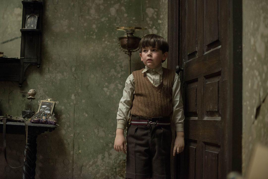 Seit der kleine Edward (Oaklee Pendergast) seine Eltern durch einen Bombenangriff verloren hat, zieht er sich immer weiter zurück. Doch nachdem er i... - Bildquelle: Nick Wall Angelfish Films Limited 2014 Photo / Nick Wall