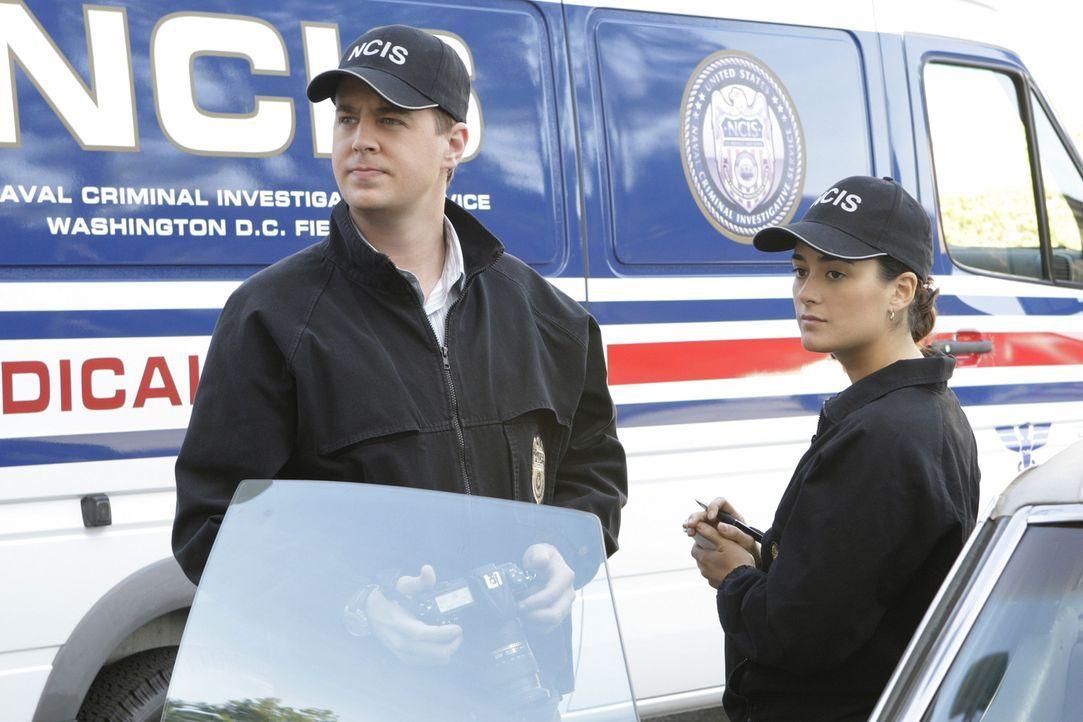 Ermitteln in einem neuen Fall: McGee (Sean Murray, l.) und Ziva (Cote de Pablo, r.) ... - Bildquelle: CBS Television