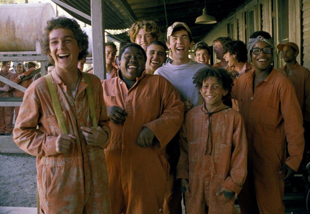 Der Junge Stanley (Shia LaBeouf, vorne, l.) wird, nachdem er beschuldigt wurde, ein paar Turnschuhe geklaut zu haben, in ein Straflager gebracht, wo... - Bildquelle: Buena Vista Pictures Distribution