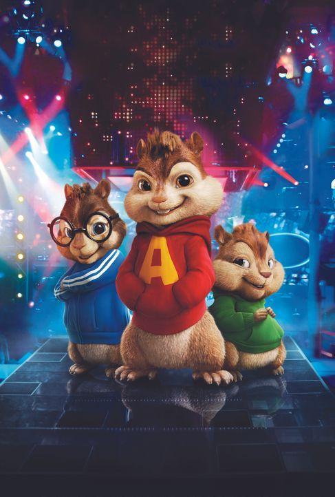 Schon bald wird (v.l.n.r.) Simon, Alvin und Theodore klar, dass ihr neues Leben als Superstars verdammt viele Schattenseiten hat ... - Bildquelle: 20th Century Fox