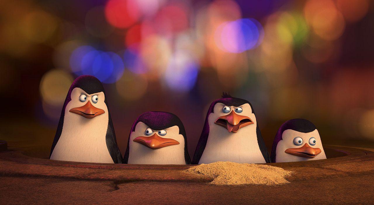 Der Schurke Dr. Octavius Brine hat mit der Zeit einen Hass gegen alle Pinguine entwickelt und will ihnen schreckliche Dinge antun. Die Gelegenheit f... - Bildquelle: 2014 DreamWorks Animation, L.L.C.  All rights reserved.