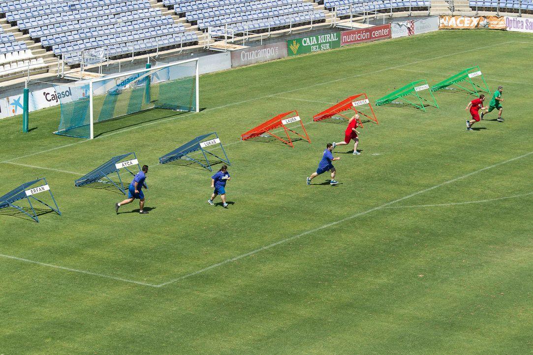 Eine knallharte Ballschlacht nimmt ihren Lauf ... - Bildquelle: Enrique Cano SAT.1
